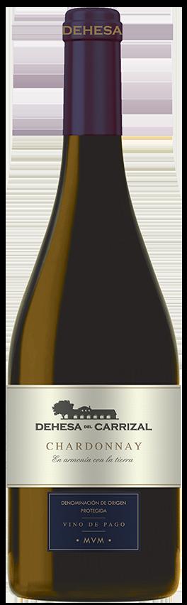 2017 Coleccion Chardonnay